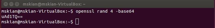 Generate Secure Passwords on Ubuntu